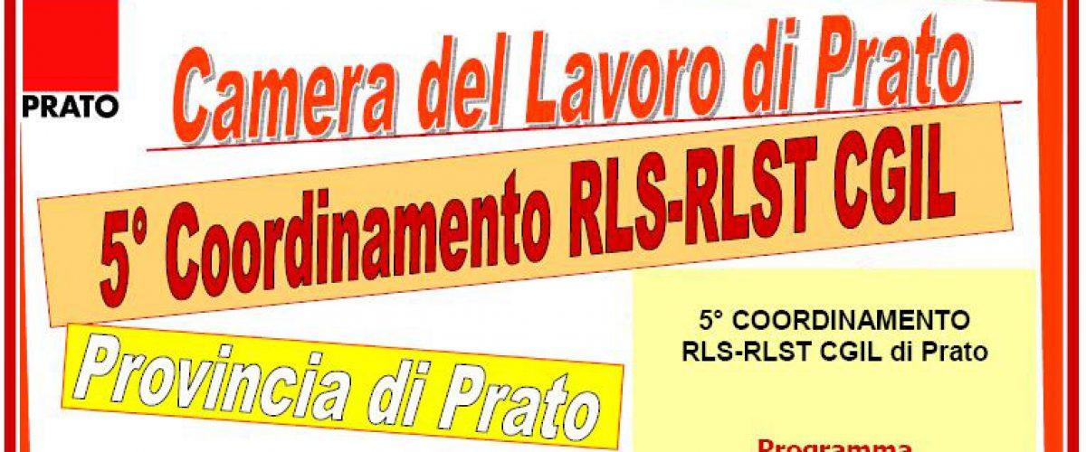 Quinto Coordinamento RLS-RLST Cgil