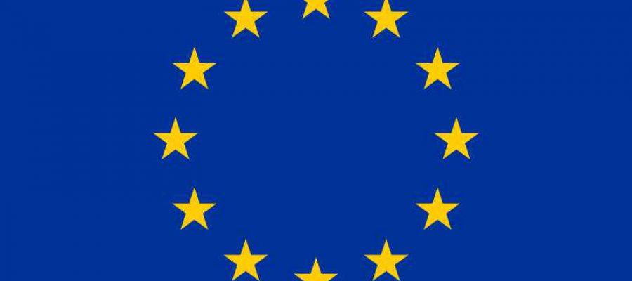Carta sociale europea Comitato europeo dei diritti sociali conclusioni 2013
